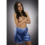plus size-014 French Blue Silky Satin Shorts S-3XL Briefs / Knickers-Nine X